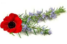 CANCELLED - ANZAC DAY TOURNAMENT @ Woodville Bowling Club